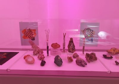 Randy Lee Cutler - Mineral Garden